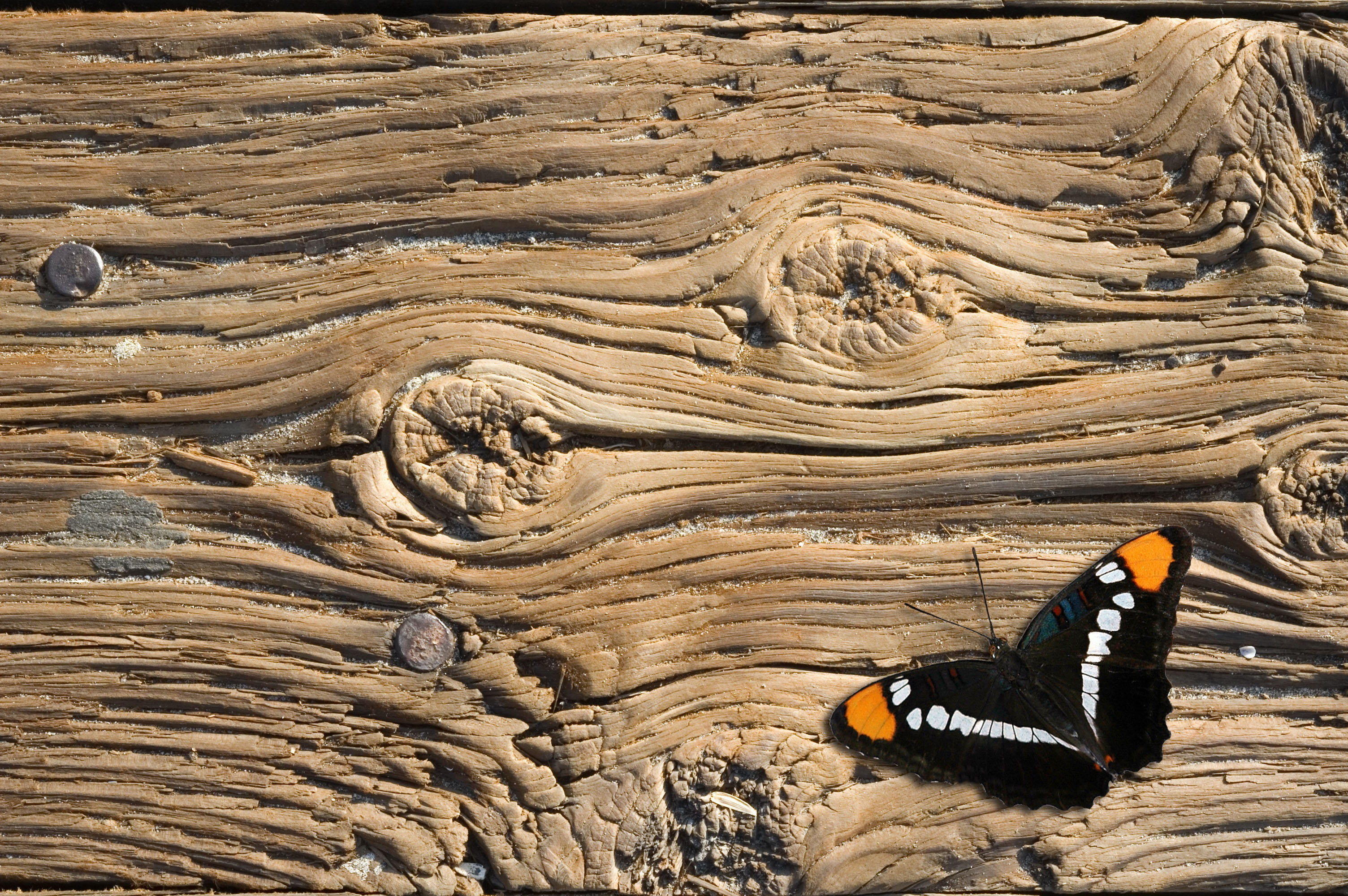 Vendita legno antico di recupero parquet tavole assi - Vendita tavole di legno ...