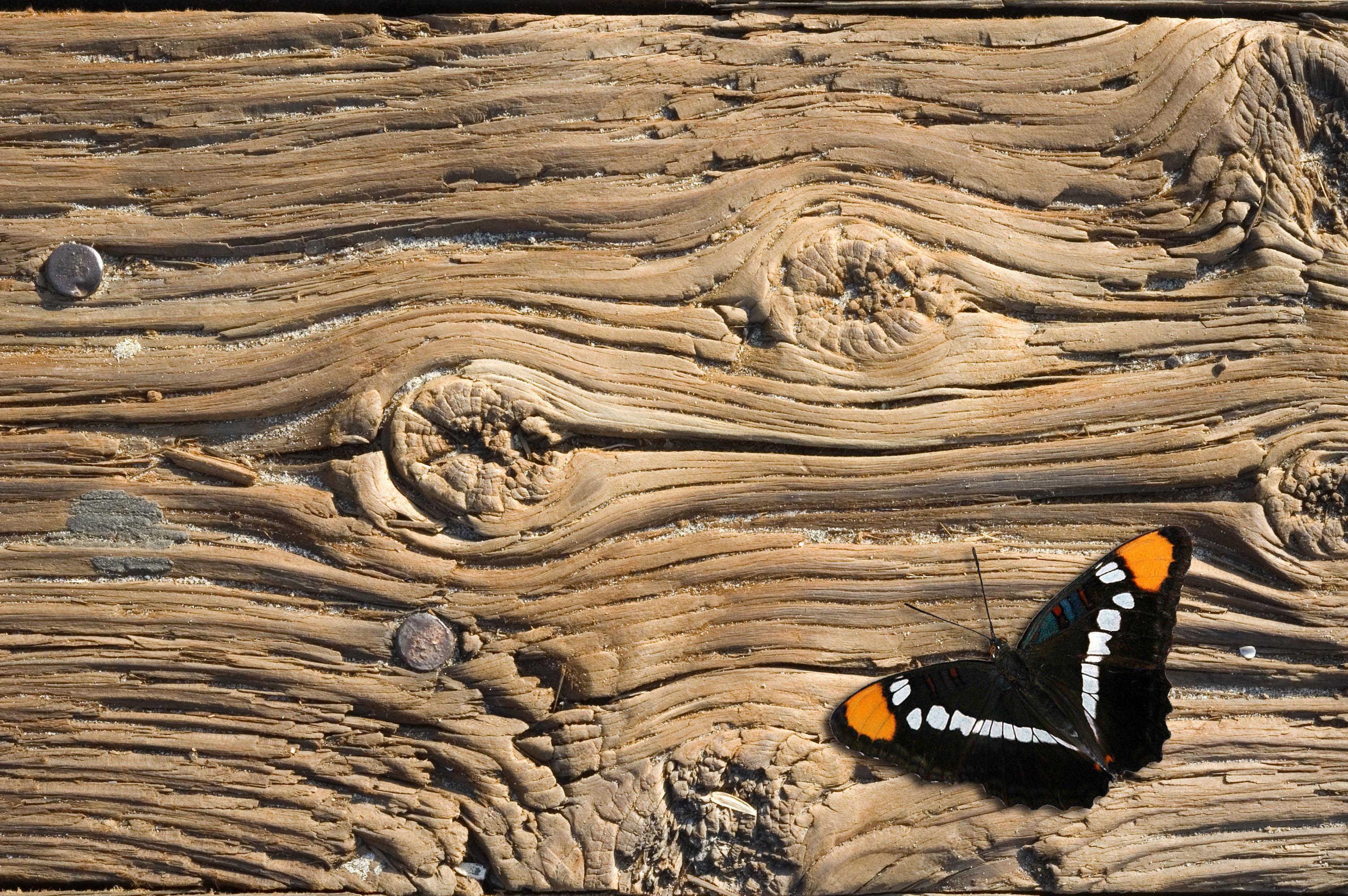 Legno Recuperato Vendita : Legno antico vendita lavorazione di pregiato legno vintage di